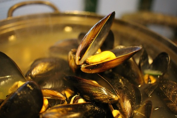 Large thumb mussels in bath 678142 960 720