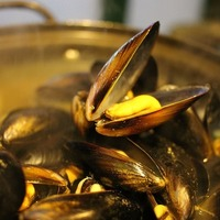 Thumb mussels in bath 678142 960 720