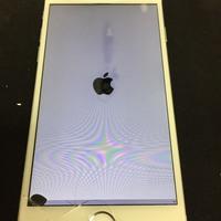iPhone修理シルバーガレージ渋谷店のiPhone6画面&液晶破損修理に関する記事