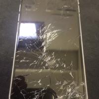 iPhone修理シルバーガレージ吉祥寺店の点検・相談のみでのご来店についてに関する記事